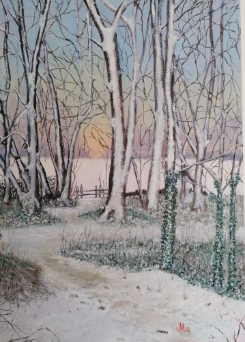 Witche's Wood in the Snow