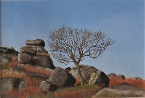 Winter Tree - Combeshead Tor oil on paper